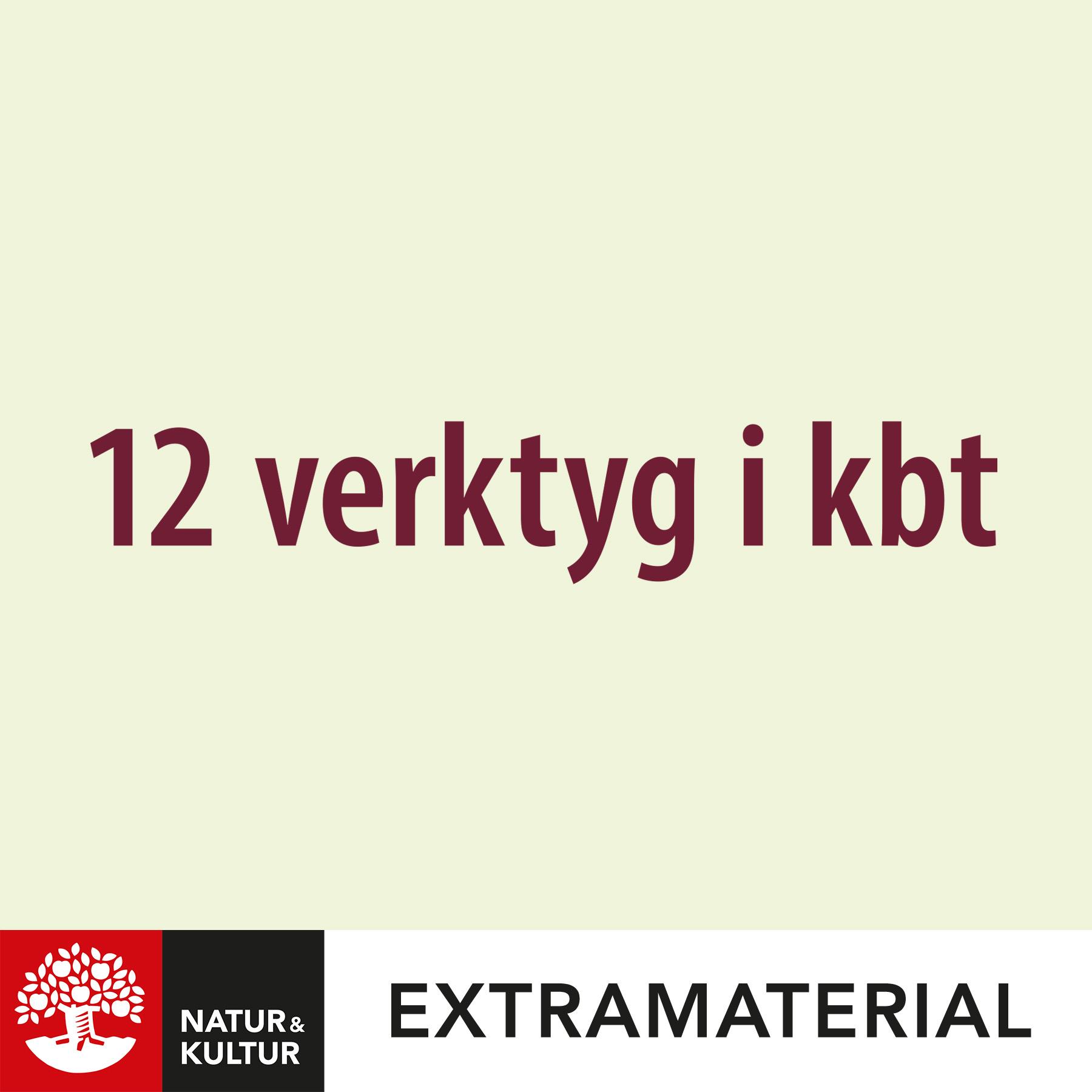 12 verktyg i KBT