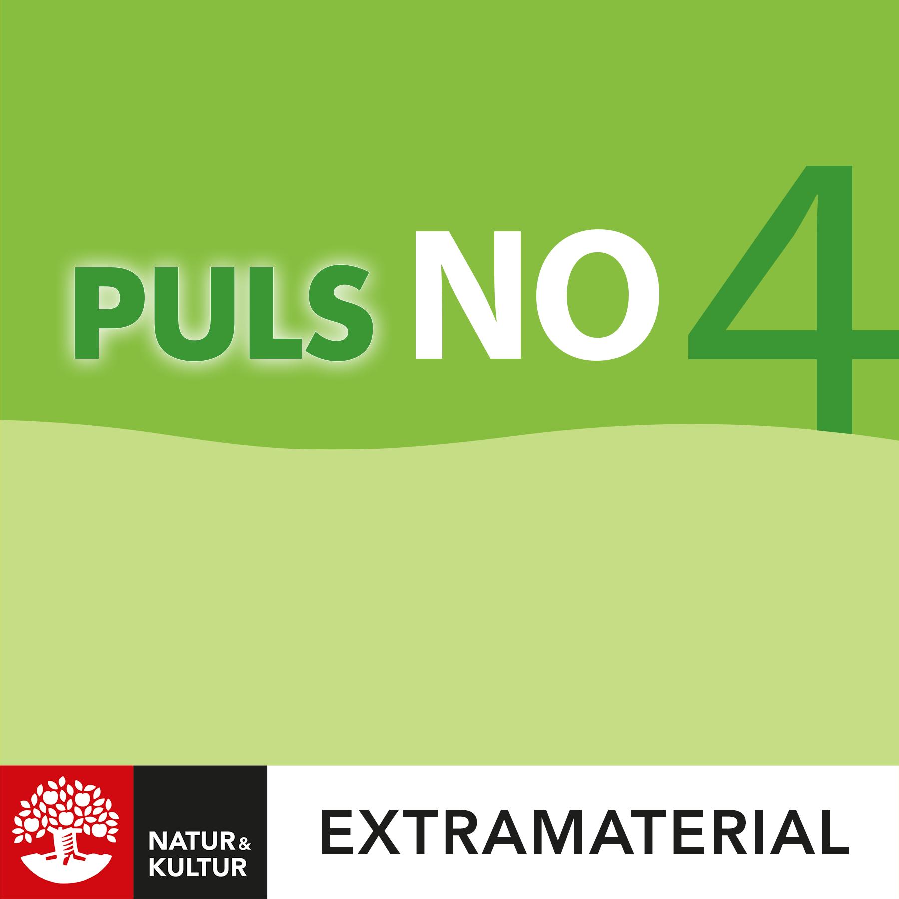 PULS NO åk 4