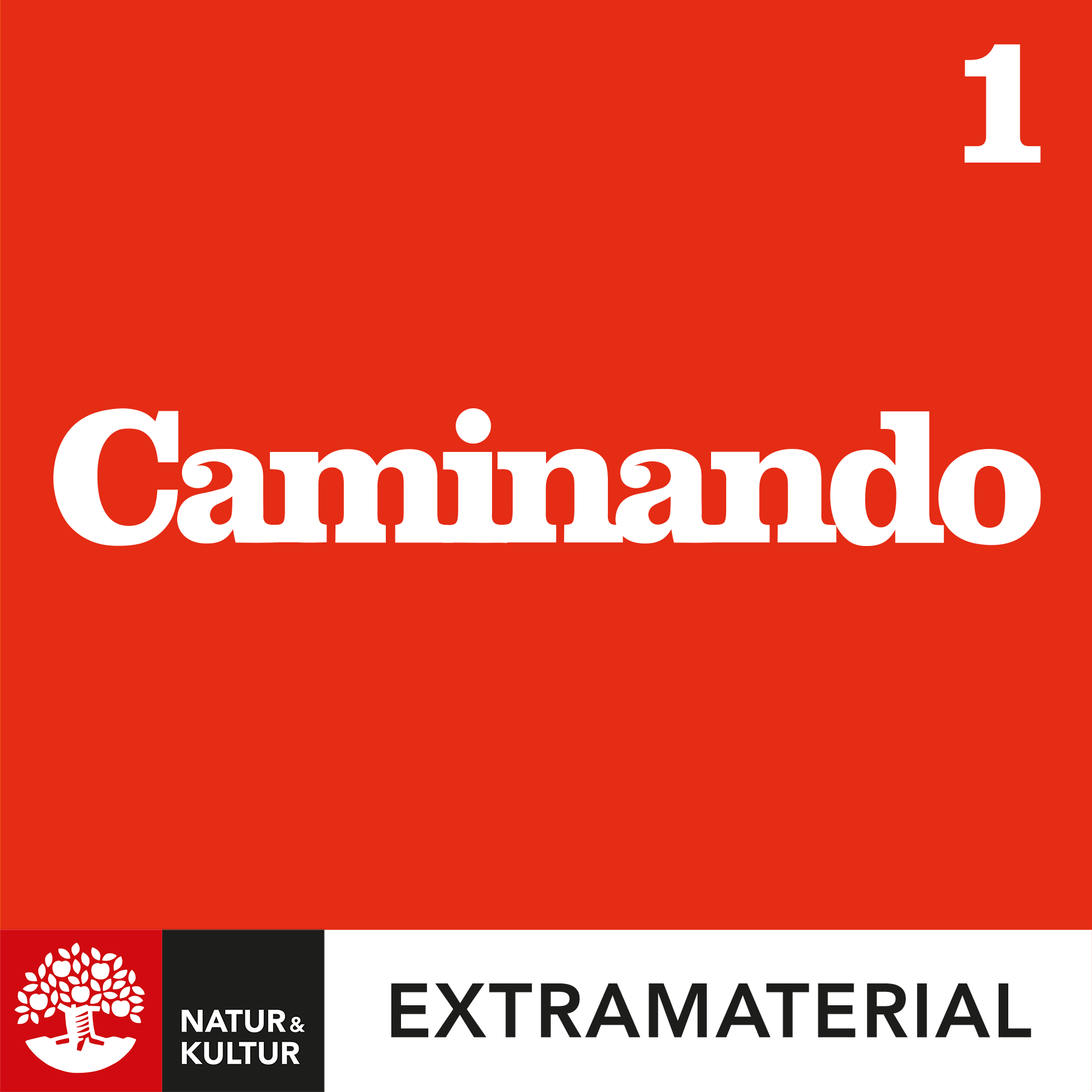 Caminando 1 fjärde upplagan