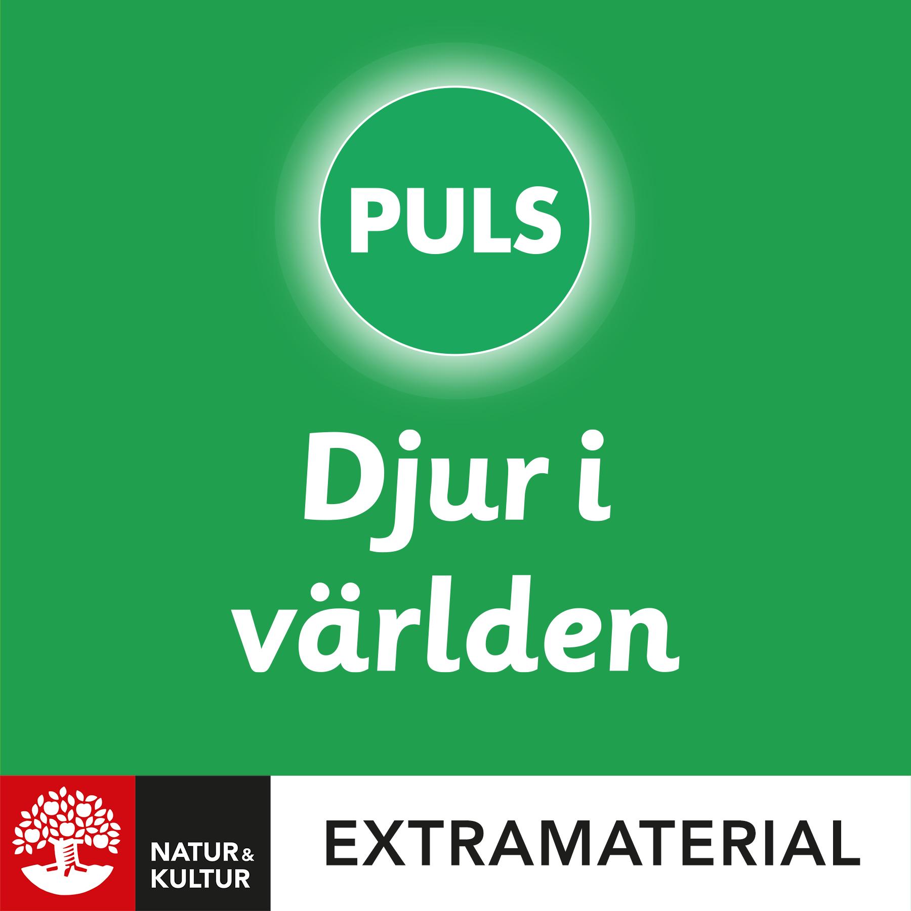 PULS 4-6 Djur i världen