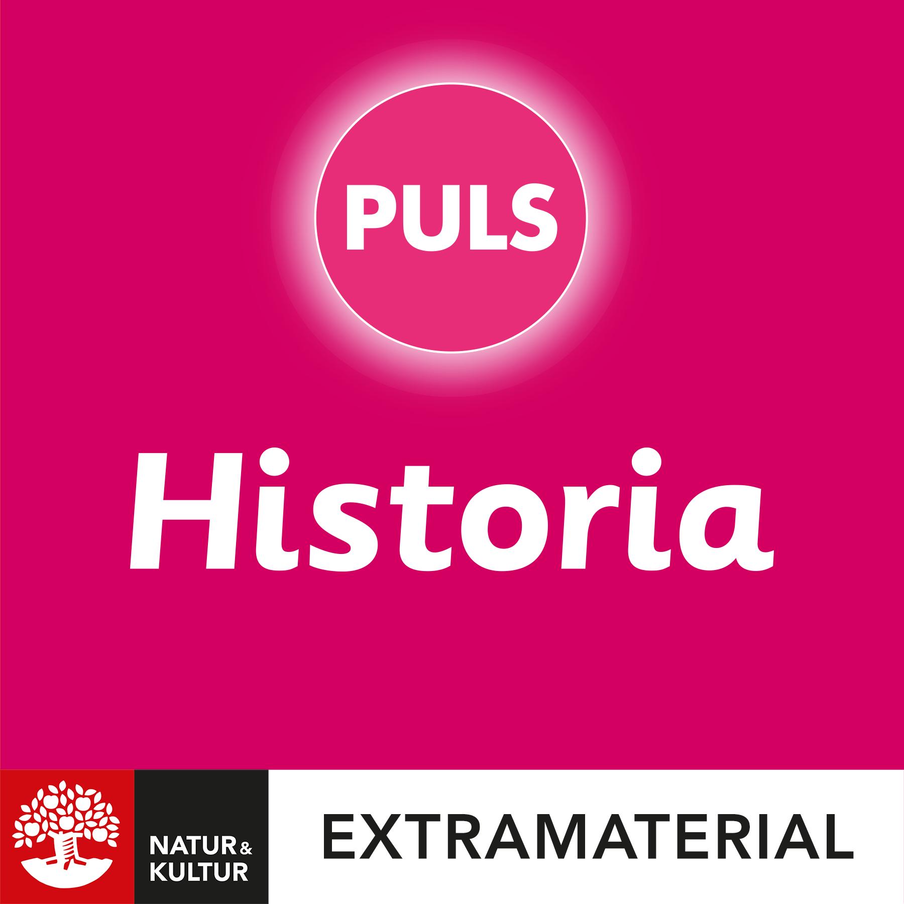 PULS 4-6 Historia